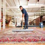 feature-area-rug