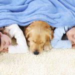 sleeping-on-the-carpet